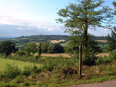 View over Blackdown Hills